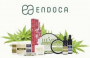Get 50% off on Endoca CBD products